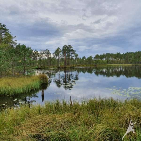 Rūdninkų girios biosferos poligonas (14 km)