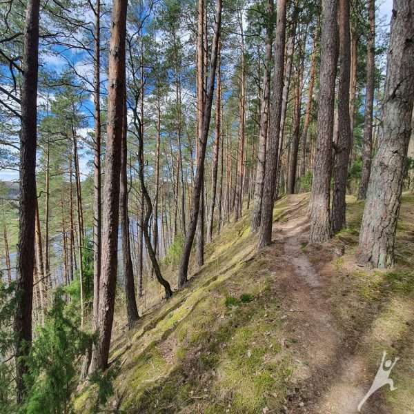 Neries skardžiais ir atodangomis (10 km)