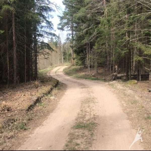 Kurtuvėnų regioninio parko takais nuo Mančių tvenkinių (9km)
