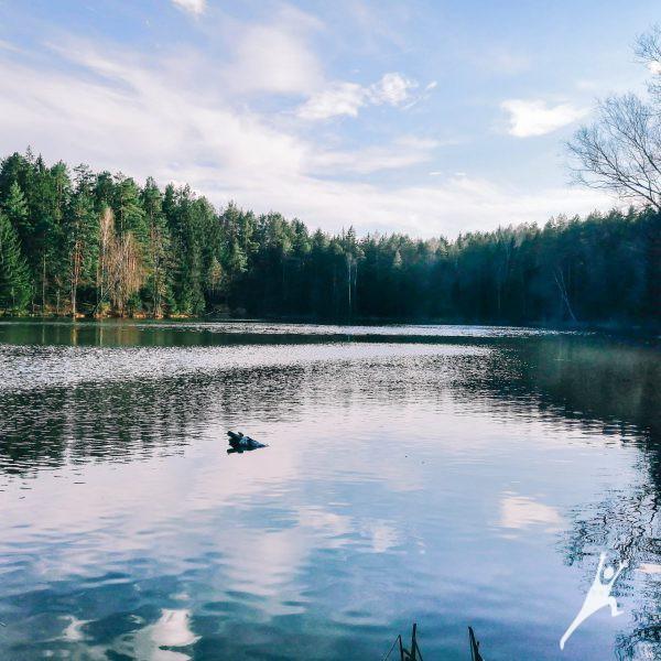 Vandens mylėtojams (palei 8 ežerus) (22 km)
