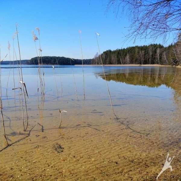 Aplink Baltuosius ir Juoduosius Lakajų ežerus (37 km)