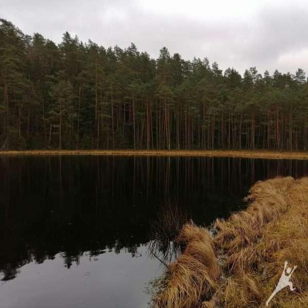 Paskui Strėvos upę link Spindžiaus ežero (14 km)