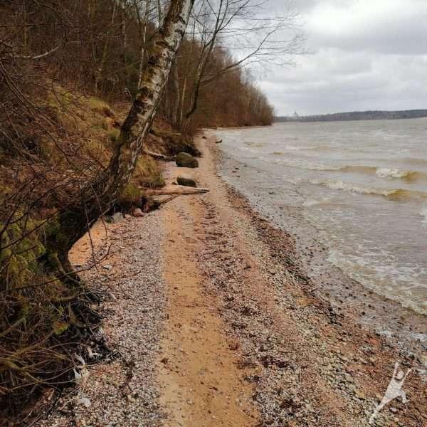 Kauno mariomis iš Žiegždrių (15 km)