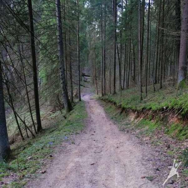 Linksmieji Panerių kalneliai (19 km)