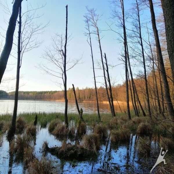 Vandens mylėtojams (2 upės ir 8 ežerai) (24 km)
