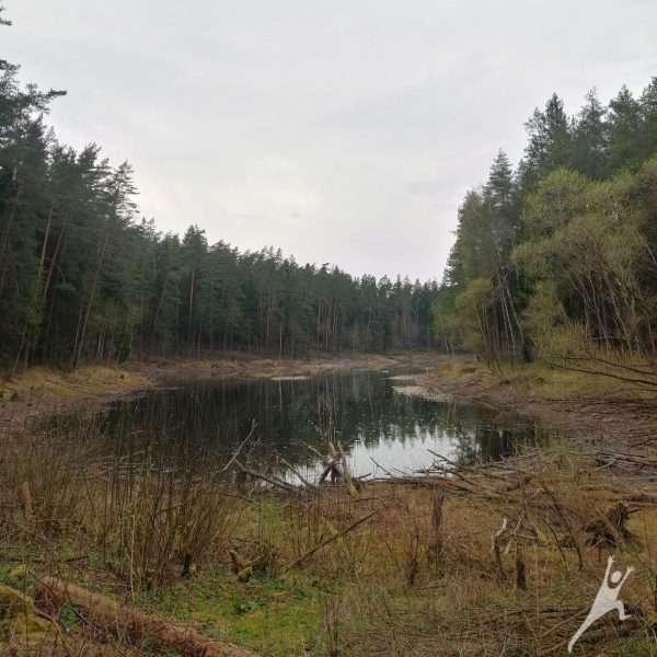 Kita Turniškių pusė (8 km)