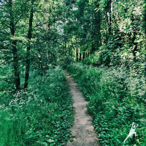 Kita Turniškių pusė (7 km)