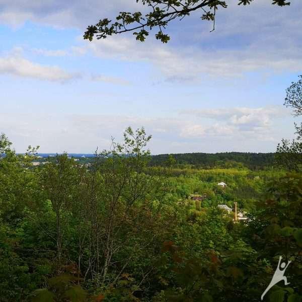 Rokantiškių kalvomis link Kučkuriškių piliakalnio (8 km)