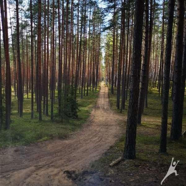 Kazlų Rūdos kalvomis ( 14 km)