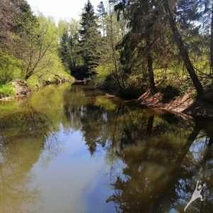 Šventosios upės vingiais Būtingėje (16 km)