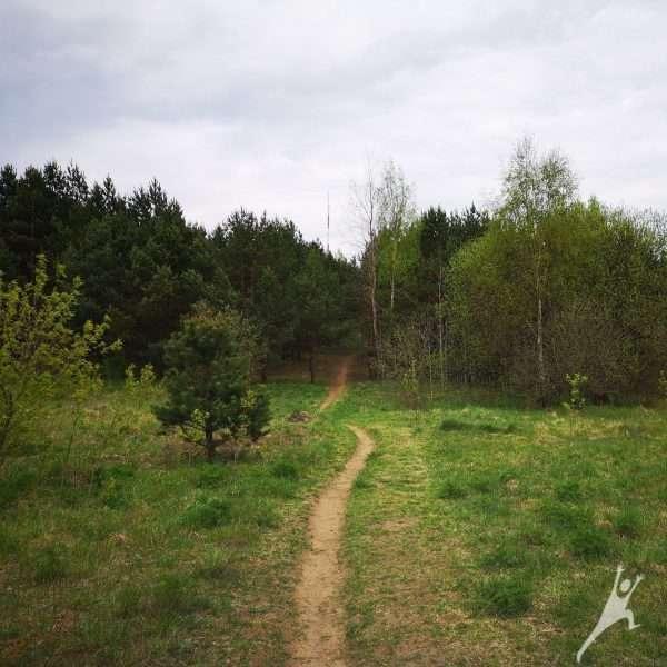 Link Pilaitės vandens ir vėjo malūnų (7 km)