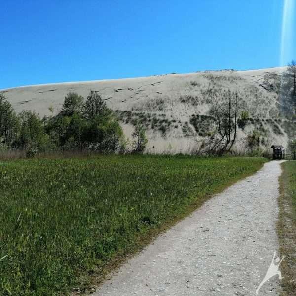Atrandant Nidos gamtos lobynus (9 km)