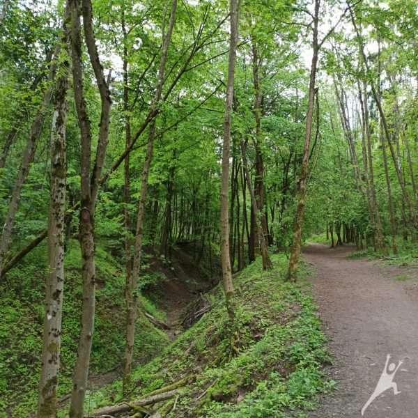 Šeškinės šlaitų takais (7 km)