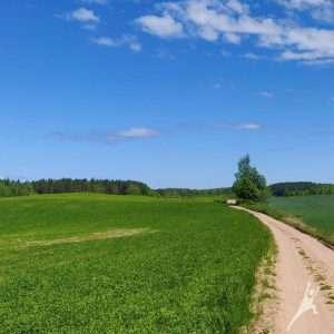 Legendomis apipinta Šiaulės žemė (23 km)