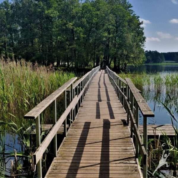 Tytuvėnų miestelio ir ežerų takais (10 km)