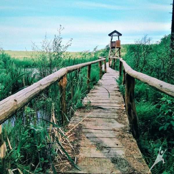 Iššūkiai Margininkų draustinyje (23 km)