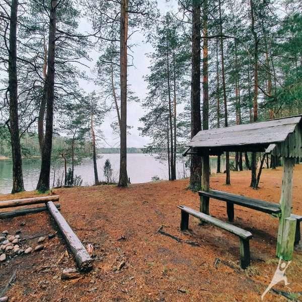 Aplink Didįjį ir Mažąjį Siaurio ežerą (13 km)