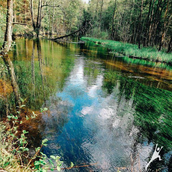 Nuo Januliškio ir Šeškuškės palei Peršokšnos upę (15 km)
