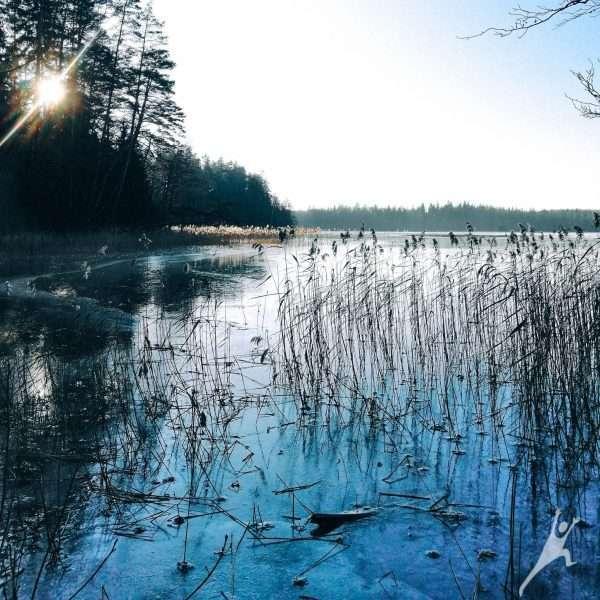 Labanoro aštuonių ežerų pakrantėmis (22 km)
