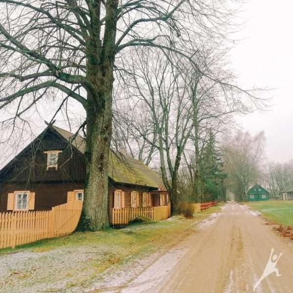 Druskų miško takais (17 km)