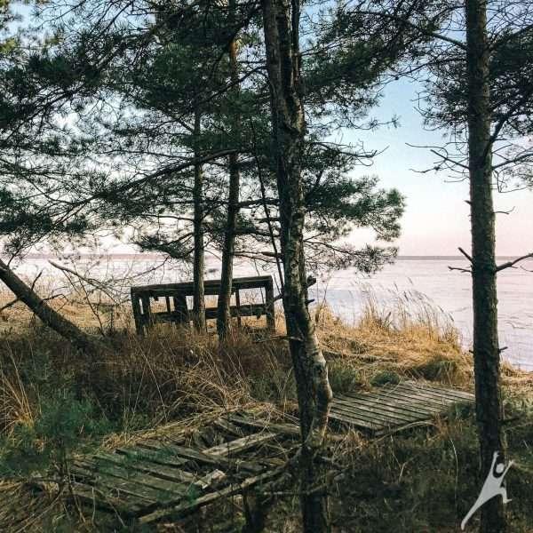Aplink Rėkyvos ežerą (14 km)