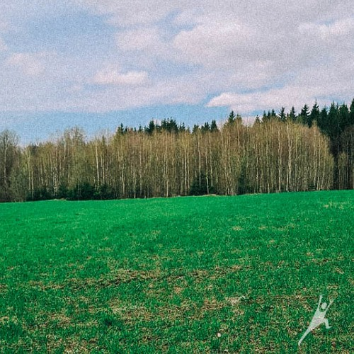 Kruopynės kalno beieškant (7 km)
