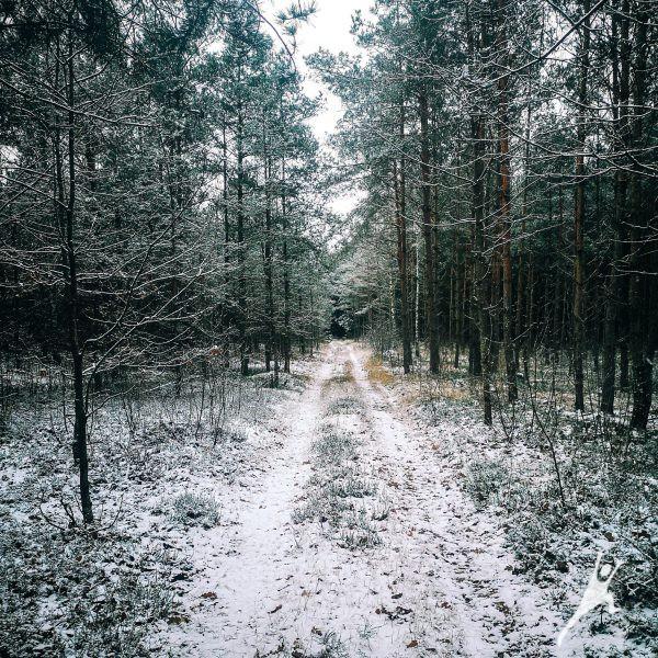 Lekėčių gamtos lobynai (11 km)