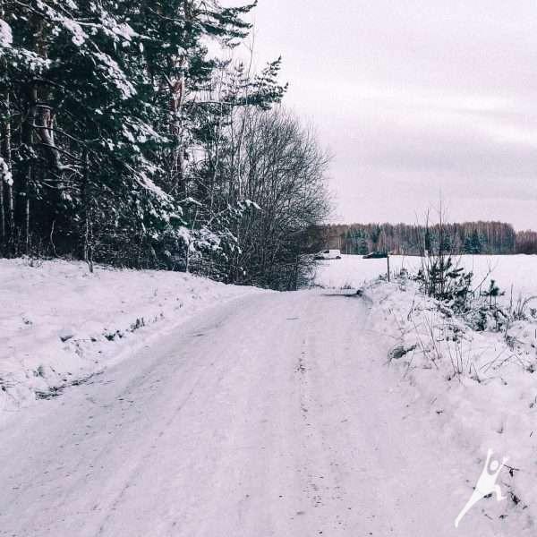 Talkšos ir Salduvės parkų takais (9 km)