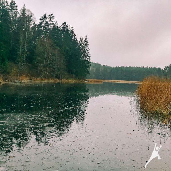 Spenglos draustinio takas (17 km)