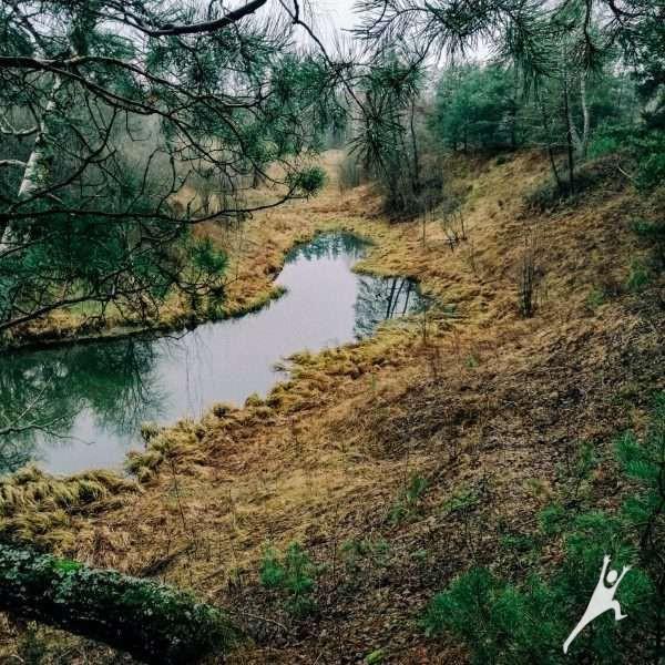 Link Ūlos upės ištakų (17 km)