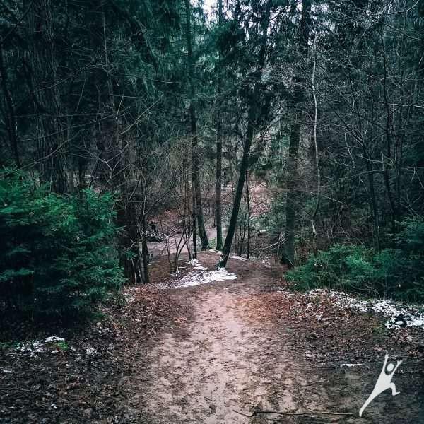 (Ne)atrasta Kleboniškio miško pusė (13 km)