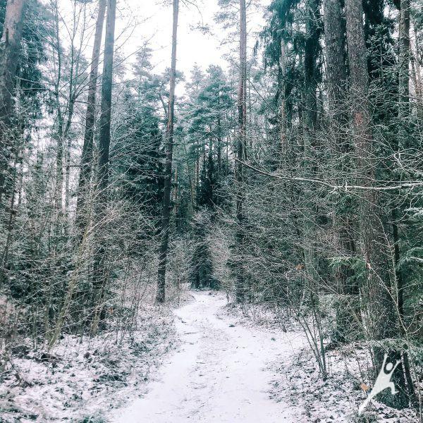 Link legendomis apipinto Girnikų kalno (26 km)
