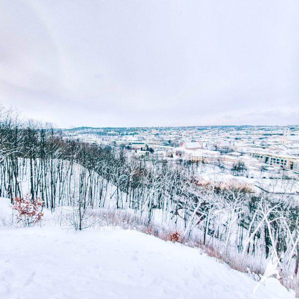 Vilnius miesto vasario 16-osios takas (7 km)