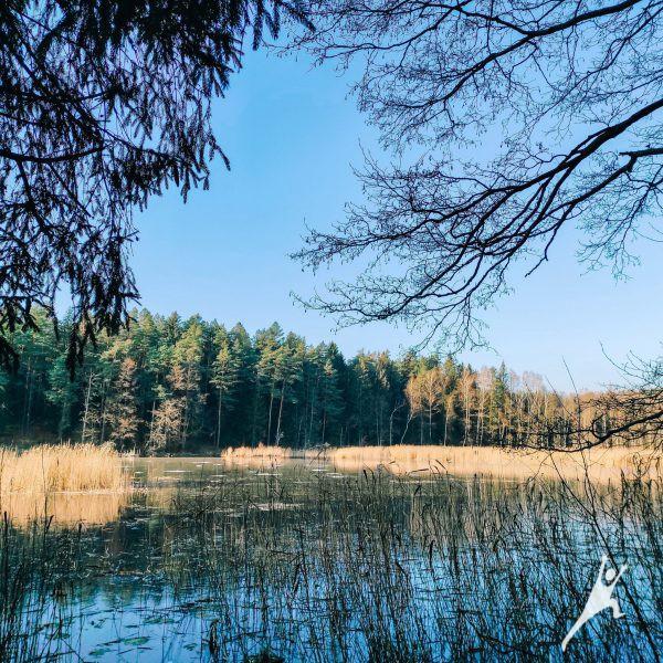 Ežerėlių draustinio takais (4 km)