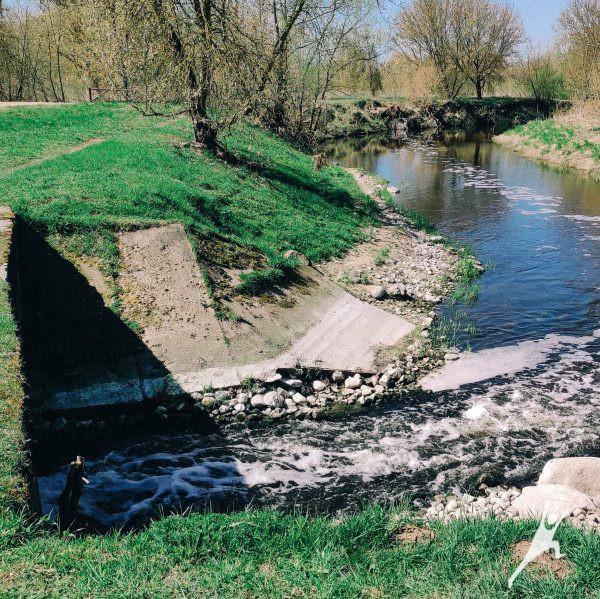 Nevėžio pakrantėmis link Nevėžninkų dvaro liekanų (8 km)