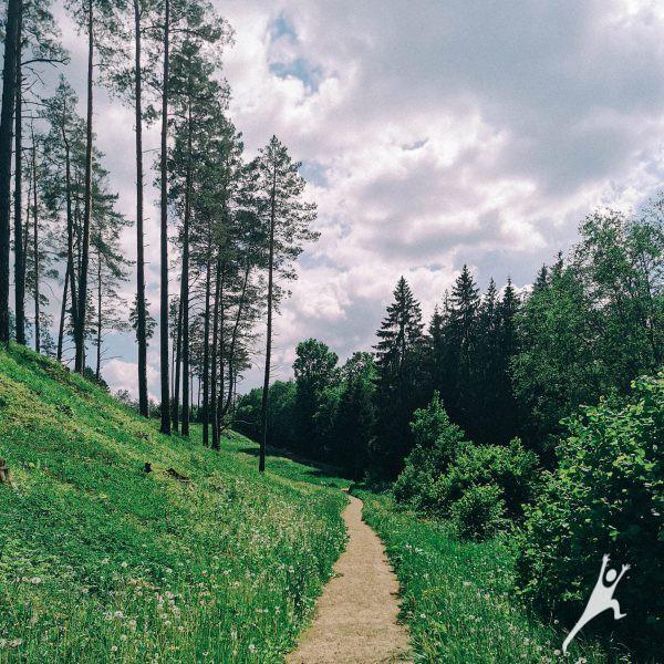 Kalnai ant kalnų: link Kačėniškės piliakalnio (13 km)
