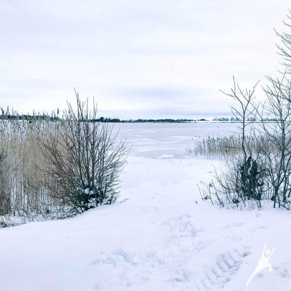 Aplink Gudelių ežerą (8 km)