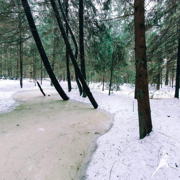 Veržuvos hidrografinio draustinio takais (15 km)