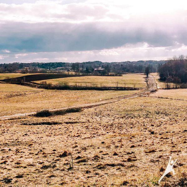 Aukštyn žemyn per Žemaitijos kalvas (18 km)