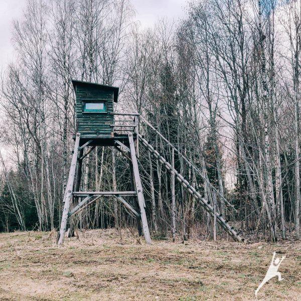 Jomantų miško įdomybės (7 km)