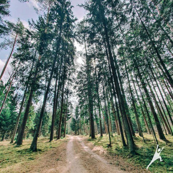 Ilgesniu keliu į laisvę (17 km)