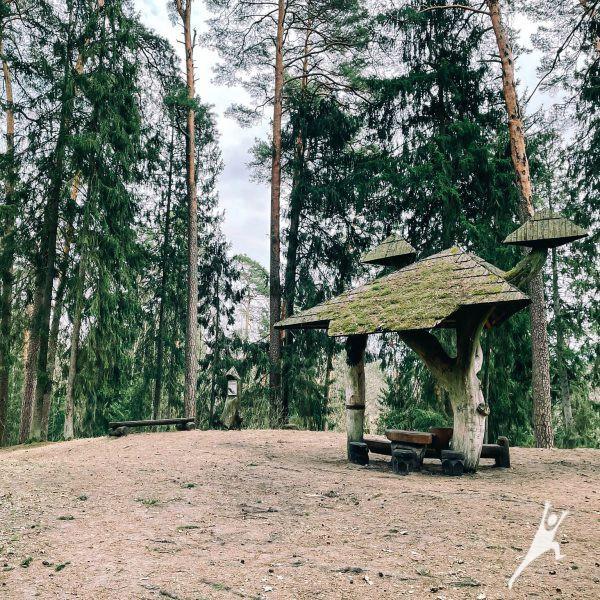 Gelgaudiškio dvaro takais (12 km)