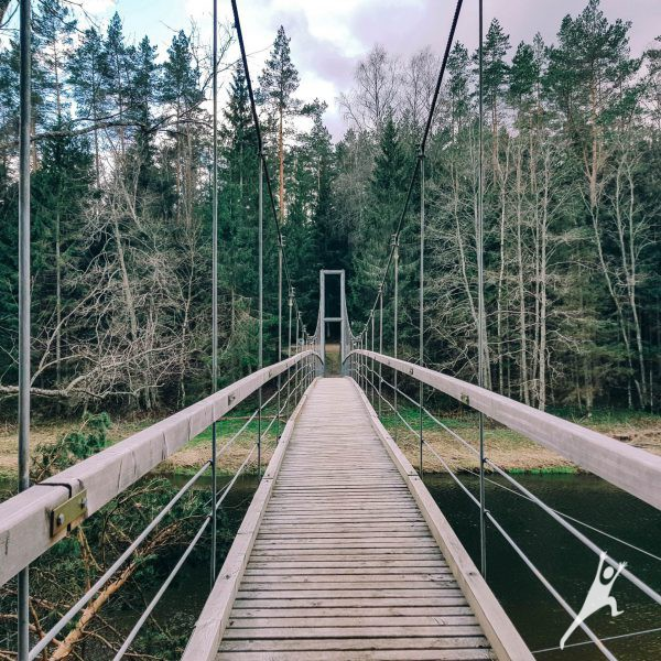 Gražiausio Šventosios upės vingio beieškant (29 km)