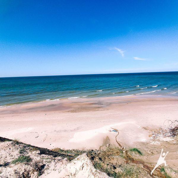 Laukinė Plazės gamtinio rezervato patirtis (8 km)