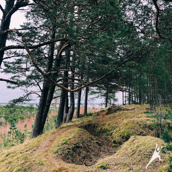 Juodkrantė – daugiau nei Raganų kalnas (10 km)